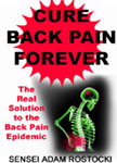 Cure Back Pain Forever Book
